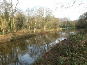 The Basingstoke Canal